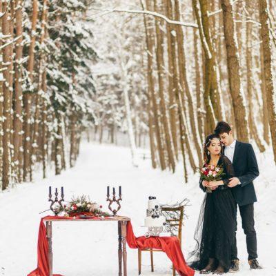 Свадьба зимой Мозырь фото